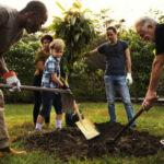 Mehrere Erwachsene und ein Kind pflanzen einen Baum. Sie tragen Arbeitshandschuhe, bereiten das Erdloch vor oder halten den Baum.